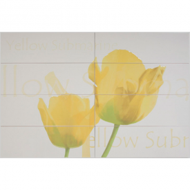 Декор Conjunto Tulipan Beige