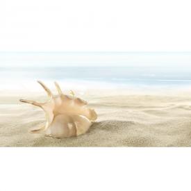 Декор Fresia Shells 4