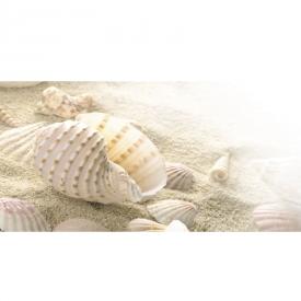 Декор Fresia Shells 1